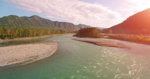 flyg- sikt för 4k UHD Lågt flyg över den nya kalla bergfloden på den soliga sommarmorgonen Gröna träd och solstrålar på lager videofilmer