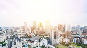 Flyg- sikt för panorama- modernt öga för stadshorisontfågel från det tokyo tornet under dramatisk blå himmel för soluppgång och f Royaltyfri Fotografi