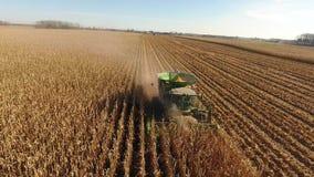 Flyg- sikt för surr 4k på enorma åkerbruka medel för sammanslutningmaskinlastbilar som skördar organiskt vete för skördar på lant stock video