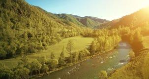 Flyg- sikt för UHD 4K Lågt flyg över den nya kalla bergfloden, äng och vägen på den soliga sommarmorgonen lager videofilmer
