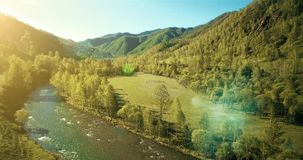 Flyg- sikt för UHD 4K Lågt flyg över den nya kalla bergfloden, äng och vägen på den soliga sommarmorgonen arkivfilmer