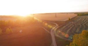 Flyg- sikt för UHD 4K Mitt--luft flyg över gult lantligt fält och grusvägen lager videofilmer