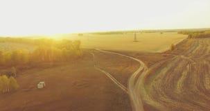 Flyg- sikt för UHD 4K Mitt--luft flyg över gult lantligt fält och grusvägen arkivfilmer