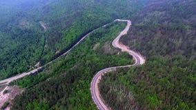 Flyg- sikt för videopn surr över vägen i skogen på vägen till Lake Baikal lager videofilmer