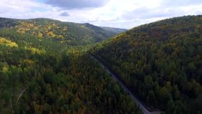 Flyg- sikt för videopn surr över vägen i skogen på vägen till Lake Baikal stock video