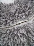 Flyg- sikt för vinter av vägen i skog royaltyfri foto