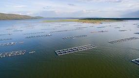 Flyg- sikt, fiskcoop, fiskburar, Khonkean, Thailand arkivfoto