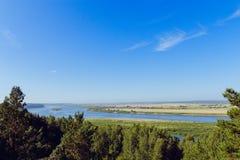 Flyg- sikt floden på den gröna skogslätten Royaltyfria Bilder