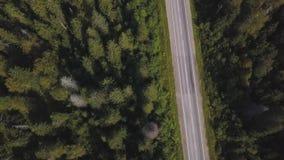 Flyg- sikt från ovannämnt av landsvägen till och med den gröna sommarskogen i sommar skjutit Bilkörning Sikt för hög vinkel av arkivfilmer