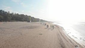 flyg- sikt 4k av ungdomarsom promenerar stranden nära Östersjön i Jurmala stock video