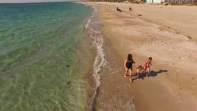 flyg- sikt Lycklig moder med två barn som kör på stranden stock video