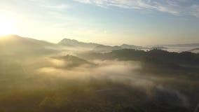 Flyg- sikt och att flyga över bergen och träden med härliga moln och himmel i soluppgång lager videofilmer