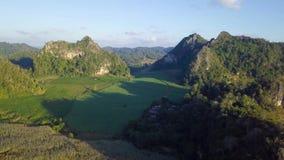 Flyg- sikt och att flyga över bergen och träden med härliga moln och himmel i soluppgång