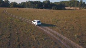 Flyg- sikt på bilkörning till och med vägen på en sommaräng stock video