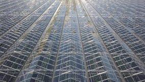 Flyg- sikt på det stora moderna växthuset stock video