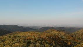 Flyg- sikt på Novi Sad, Serbien från det Fruska goraberget på hösten lager videofilmer