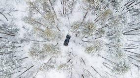 Flyg- sikt på SUV 6x6 som rider vid vintervägen i snö-täckt skog Arkivbild