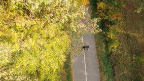 Flyg- sikt på två löpare i höstskogen arkivfilmer