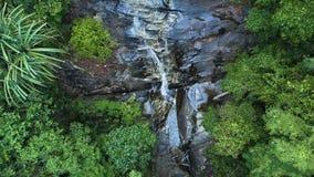 Flyg- sikt: Rainforest och vattenfallet Flytta sig ner stock video