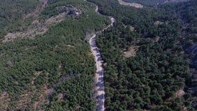 Flyg- sikt som flyger över gammal lappad skog för två gränd stock video
