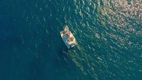 flyg- sikt Stor segla katamaran i det öppna havet stock video