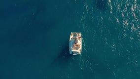 flyg- sikt Stor segla katamaran i det öppna havet lager videofilmer