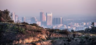 Flyg- sikt ?ver det Los Angeles centret fr?n Hollywood Hills arkivbilder