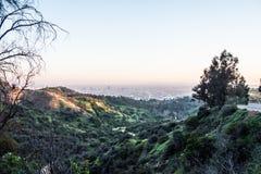 Flyg- sikt ?ver det Los Angeles centret fr?n Hollywood Hills royaltyfria foton