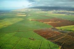 Flyg- sikter av sockerrörskördar i Maui Arkivfoto
