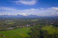 Flyg- skott av Balineserisfält i en solig dag arkivbild