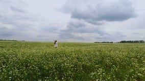 Flyg- skott av kvinnadansen i öppnande händer för fält till himmel i sommar, surrfluga stock video