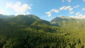 Flyg- skott ovanför skogflyget längs bergen Panorera till det vänstert lager videofilmer