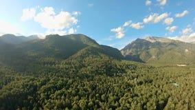 Flyg- skott ovanför skogflyget längs bergen Panorera till det vänstert stock video