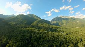 Flyg- skott ovanför skogflyget längs bergen Panorera till det vänstert arkivfilmer