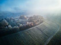 Flyg- snö täckt natur härliga Europa Forest Mountain Travel White Famous för vinter för landskap för trädsurrlängd i fot räknat Royaltyfri Bild