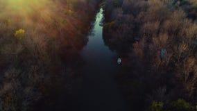 Flyg- surrsikt över floden och höstträden från skogen under solnedgång stock video