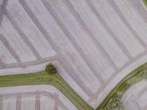 Flyg- surrsikt av den skördade near askkullen för lantgård Strimmigt med gräs och träd arkivbilder