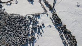 Flyg- surrsikt av detäckte träna efter ett snöfall Italienska Alps Royaltyfri Bild