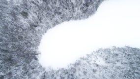 Flyg- surrsikt av ett vinterlandskap Snö täckte skogen och sjöar arkivfoton