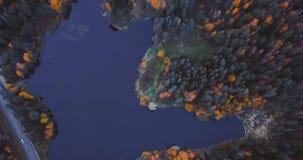 Flyg- surrsikt av sjön och skogen, ovanför träd Det ryska landskapet med sörjer och gran, aftontid i den lösa naturen 4k lager videofilmer