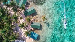 Flyg- surrsikt av tobakCaye den lilla karibiska ön i den Belize barriärrevet royaltyfria foton