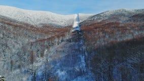 Flyg- täckte att flyga ovanför snöig vinterbergskog med insnöat vildmarken lager videofilmer