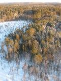 flyg- taig Royaltyfri Fotografi
