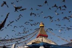 Flyg till Boudhanath Fotografering för Bildbyråer