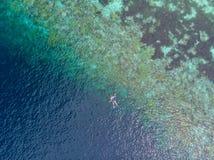 Flyg- ?verkant ner folk som snorklar p? det tropiska karibiska havet f?r korallrev, turkosbl?tt vatten Indonesien Wakatobi sk?rg? royaltyfria bilder