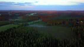 Flyg- video av dimman på solnedgången Härlig sikt av skogen och fälten lager videofilmer