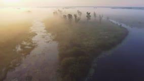 flyg- video för längd i fot räknat 4K av den dimmiga morgonen Flyga över den Desna floden Soluppgångtid Kyiv region, Ukraina stock video