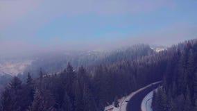 Flyga över en vinterskogväg i bergen stock video