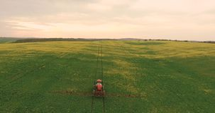 Flyga över fältet med en Canola Åkerbruk traktor som besprutar fältet för sommarskördvete arkivfilmer