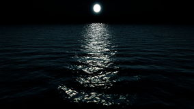 Flyga över havet på natten arkivfilmer